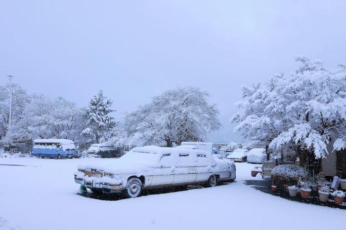 京都 大原雪景色 2019_f0021869_23431702.jpg