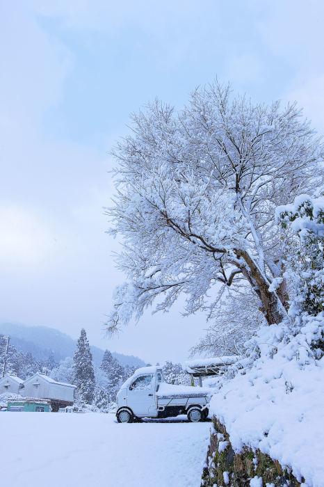 京都 大原雪景色 2019_f0021869_23431874.jpg