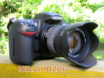 b0132475_20112625.jpg