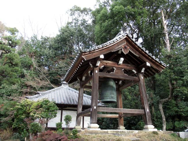 円福寺 (達磨寺)_e0048413_22004995.jpg