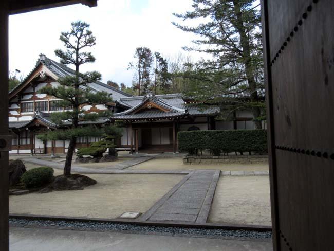円福寺 (達磨寺)_e0048413_22011412.jpg