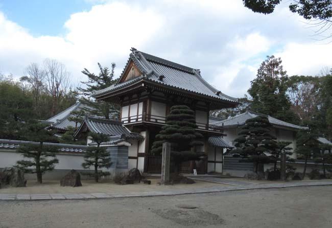 円福寺 (達磨寺)_e0048413_22011725.jpg
