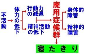 b0165362_09553811.jpg