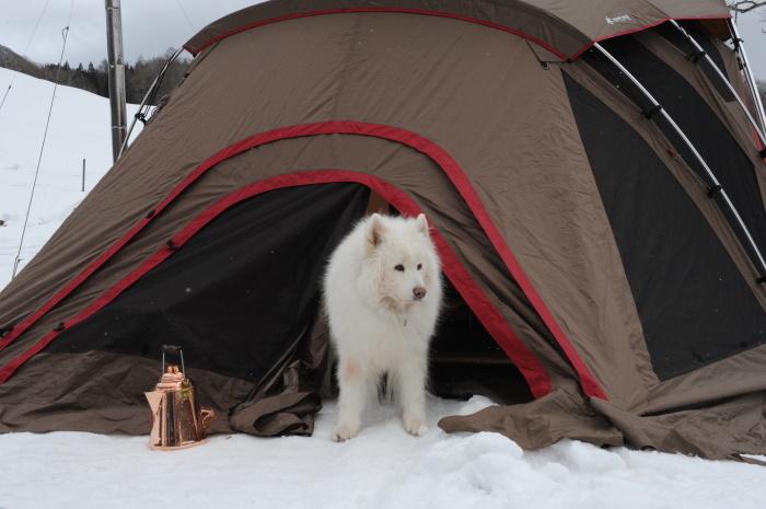 雪中キャンプ in一色の森キャンプ場 1_a0049296_18452708.jpg