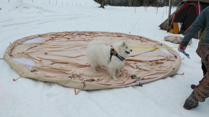 雪中キャンプ in一色の森キャンプ場 1_a0049296_18543362.jpg