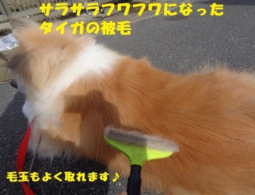 f0121712_00444146.jpg