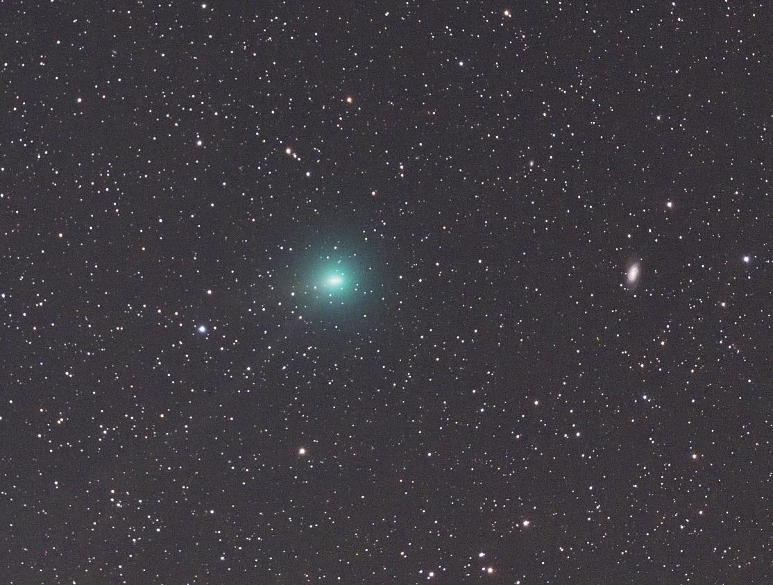 2月14日の岩本彗星(C/2018  Y1)-NGC2903との接近-_e0344621_23352409.jpg