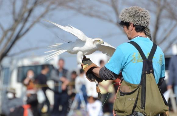 フライトフェスタ2019 競技ルール Flight Festa 2019 Competition Rule_c0132048_23030073.jpg