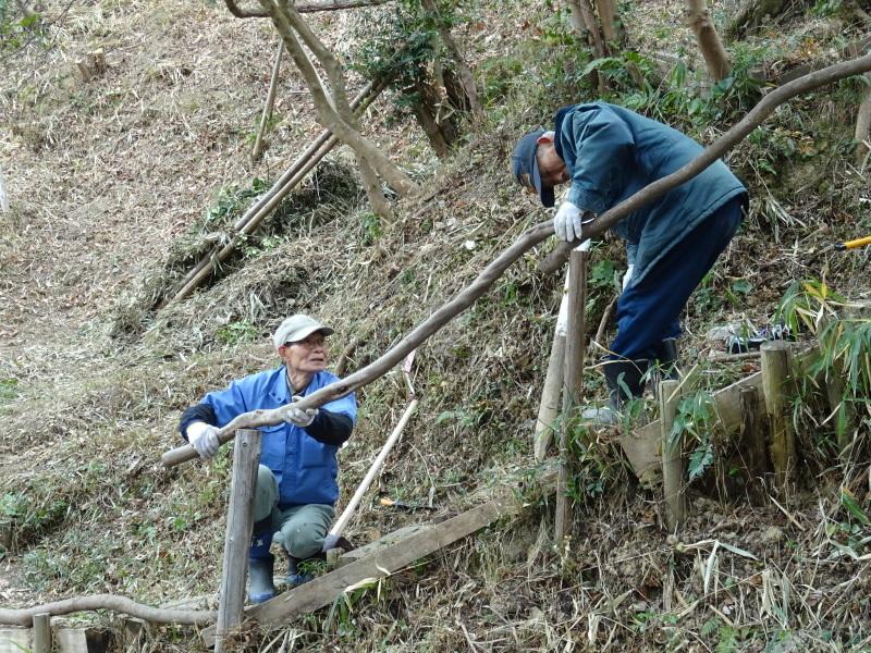 全員で楽しく間伐作業・・・うみべの森_c0108460_17010681.jpg