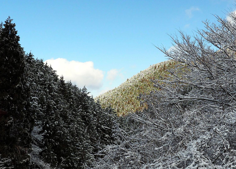 金剛山の樹氷 Ⅱ_e0254493_23295192.jpg