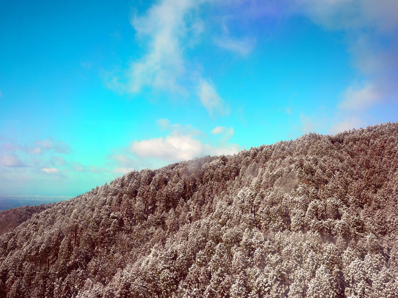 金剛山の樹氷 Ⅱ_e0254493_23301450.jpg