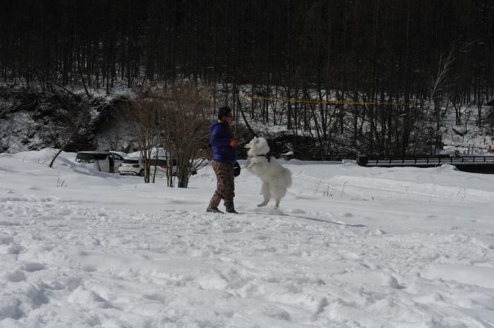 雪中キャンプ in一色の森キャンプ場 2_a0049296_18345284.jpg