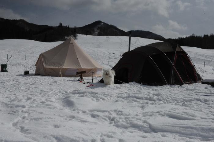 雪中キャンプ in一色の森キャンプ場 2_a0049296_18353244.jpg