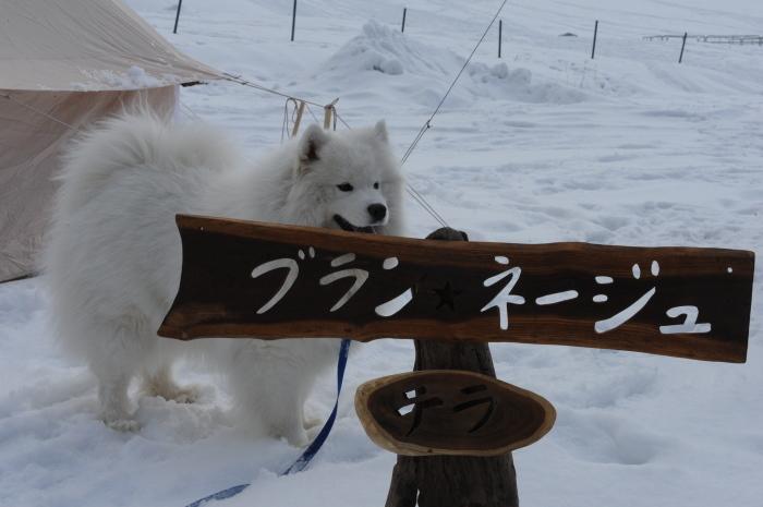 雪中キャンプ in一色の森キャンプ場 2_a0049296_18374330.jpg