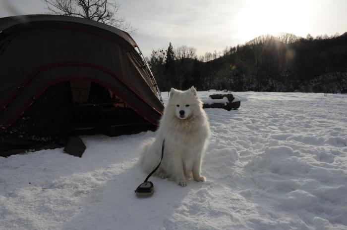 雪中キャンプ in一色の森キャンプ場 2_a0049296_18375332.jpg
