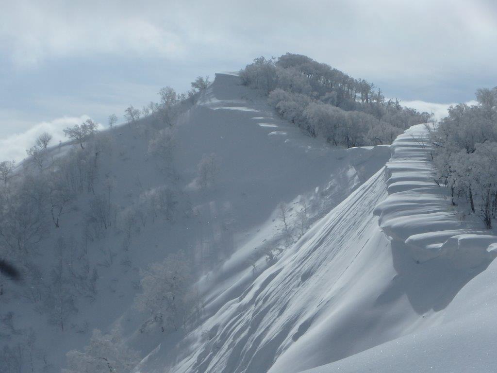 白老岳と白老岳、2019.2.9ー同行者からの写真ー_f0138096_13465561.jpg