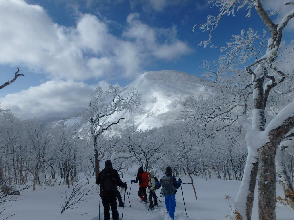 白老岳と白老岳、2019.2.9ー同行者からの写真ー_f0138096_13470165.jpg
