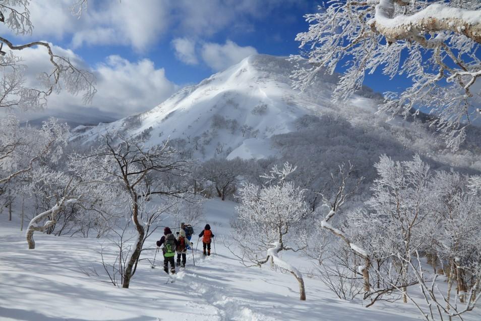 白老岳と白老岳、2019.2.9ー同行者からの写真ー_f0138096_13483776.jpg