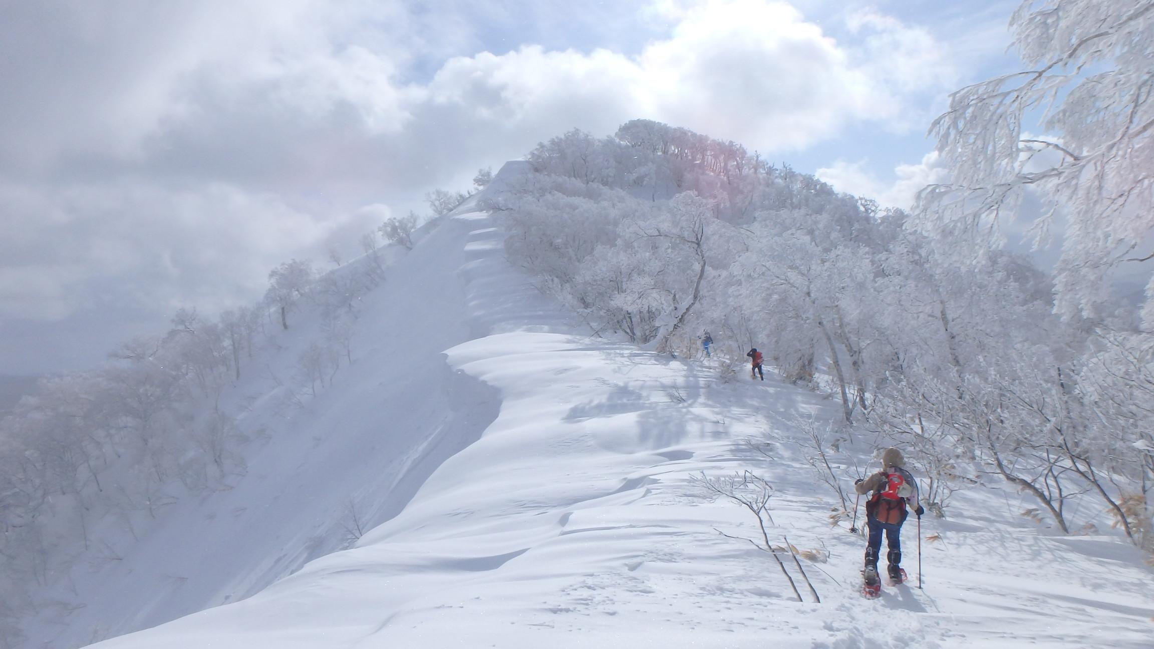 白老岳と白老岳、2019.2.9ー同行者からの写真ー_f0138096_13493957.jpg