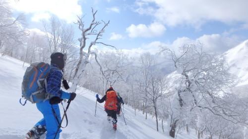 白老岳と白老岳、2019.2.9ー同行者からの写真ー_f0138096_13494670.jpg