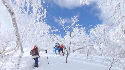 白老岳と白老岳、2019.2.9ー同行者からの写真ー_f0138096_13495100.jpg