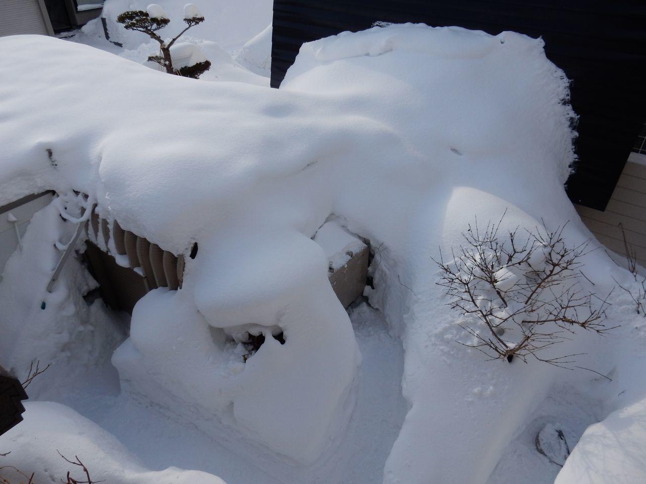 ギリギリながらも10日ぶりに真冬日を脱する_c0025115_21472350.jpg