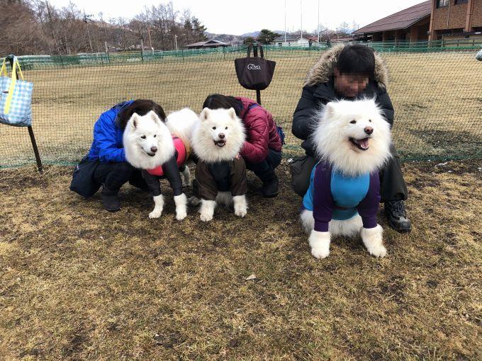 2019年ワフ 雪遊びオフ その1_f0128542_00280020.jpg