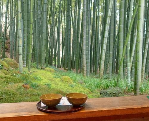 雪上がりの鎌倉散歩_b0145398_23450371.jpg