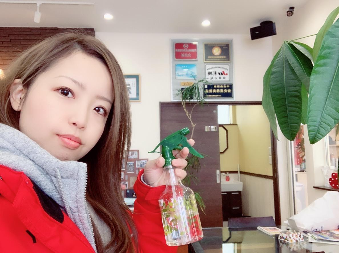 2月16日(土)☆ハイエースあります✊サクシードA様納車♡ ランクル レクサス ハマー TOMMY♡_b0127002_16113473.jpg