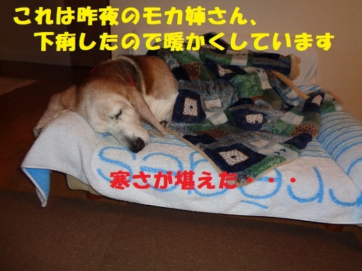 f0121712_00165388.jpg