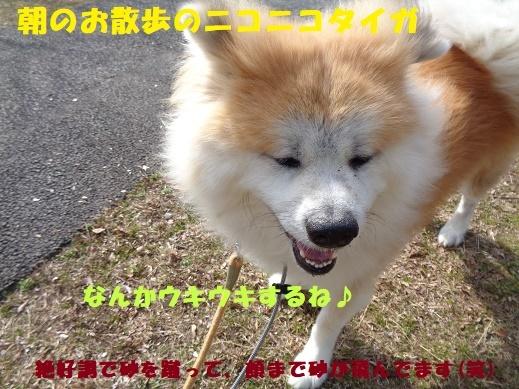 f0121712_22150110.jpg
