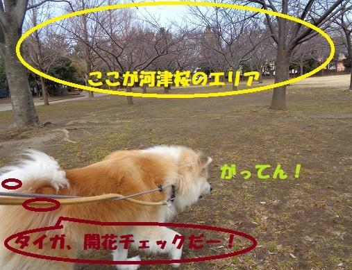 f0121712_22235936.jpg