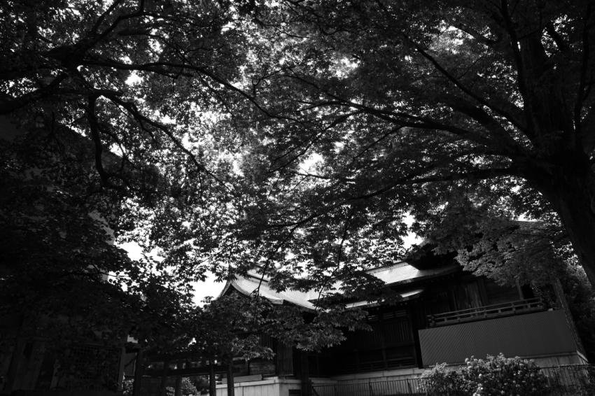 ようこそ、青春にめぐりあう旅~金沢~_d0349418_22401111.jpg