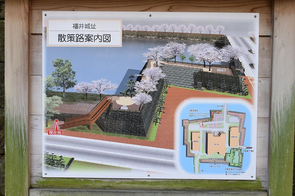 越前松平家の福井城跡を歩く。 その1 ~内堀、石垣~_e0158128_21070812.jpg