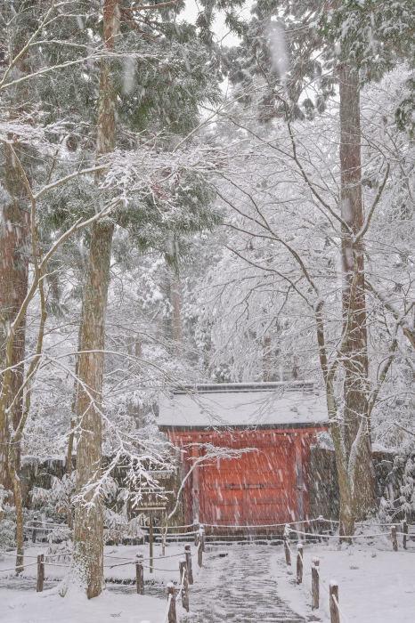 京都 大原雪景色 2019_f0021869_00540761.jpg