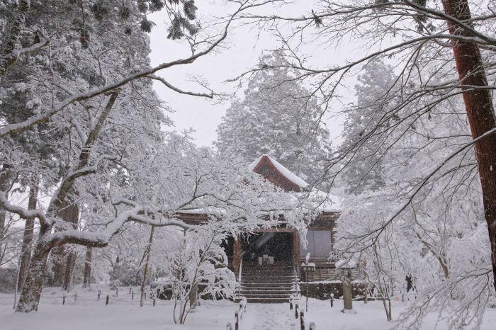 京都 大原雪景色 2019_f0021869_00540796.jpg