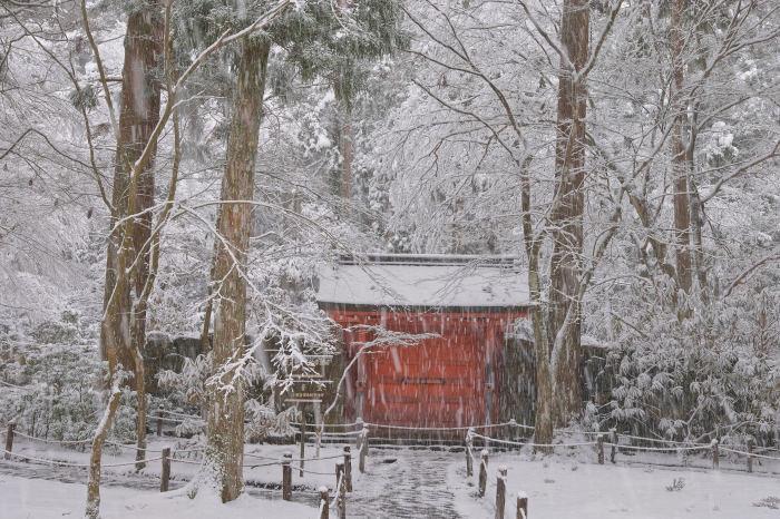 京都 大原雪景色 2019_f0021869_00541137.jpg