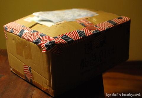 博多の美味しいものが詰まった小包(とやる気のない隊長)_b0253205_04293820.jpg