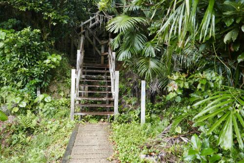 海界の村を歩く 太平洋 大神島_d0147406_19282418.jpg