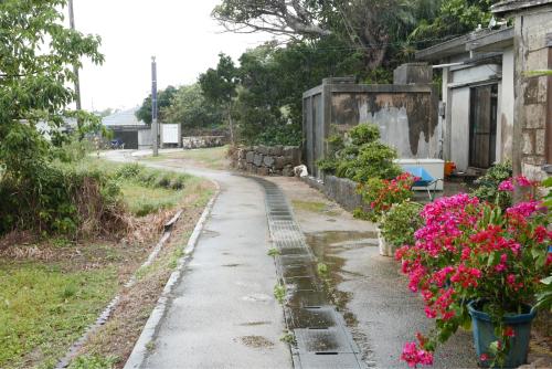 海界の村を歩く 太平洋 大神島_d0147406_19284414.jpg