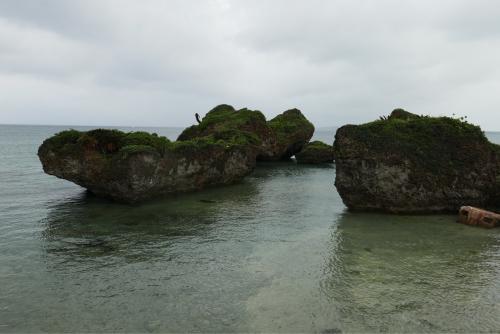 海界の村を歩く 太平洋 大神島_d0147406_19305940.jpg