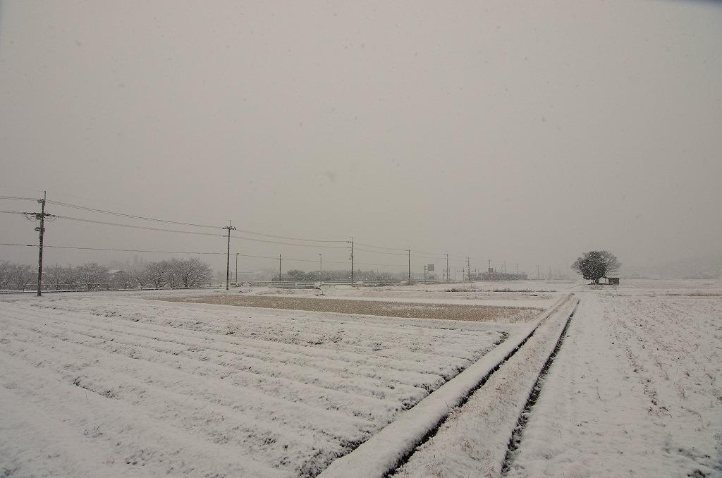 初の積雪_c0106831_00054048.jpg