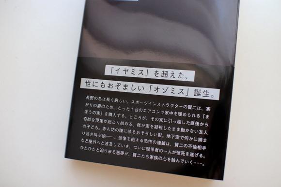 悩みとオゾミス_e0234741_21360847.jpg
