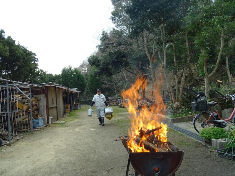災害復旧工事開始&間伐・・・うみべの森_c0108460_16313707.jpg