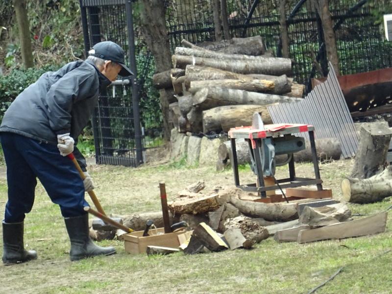 災害復旧工事開始&間伐・・・うみべの森_c0108460_16334623.jpg