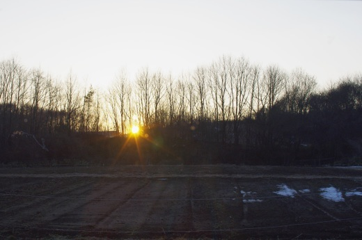 明後日は雨水。すでに雪はない。_c0110869_10584855.jpg