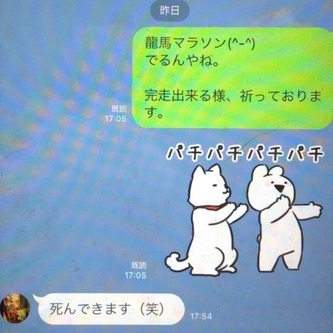 2019  龍馬マラソン (o^^o)_f0039487_14475552.jpg