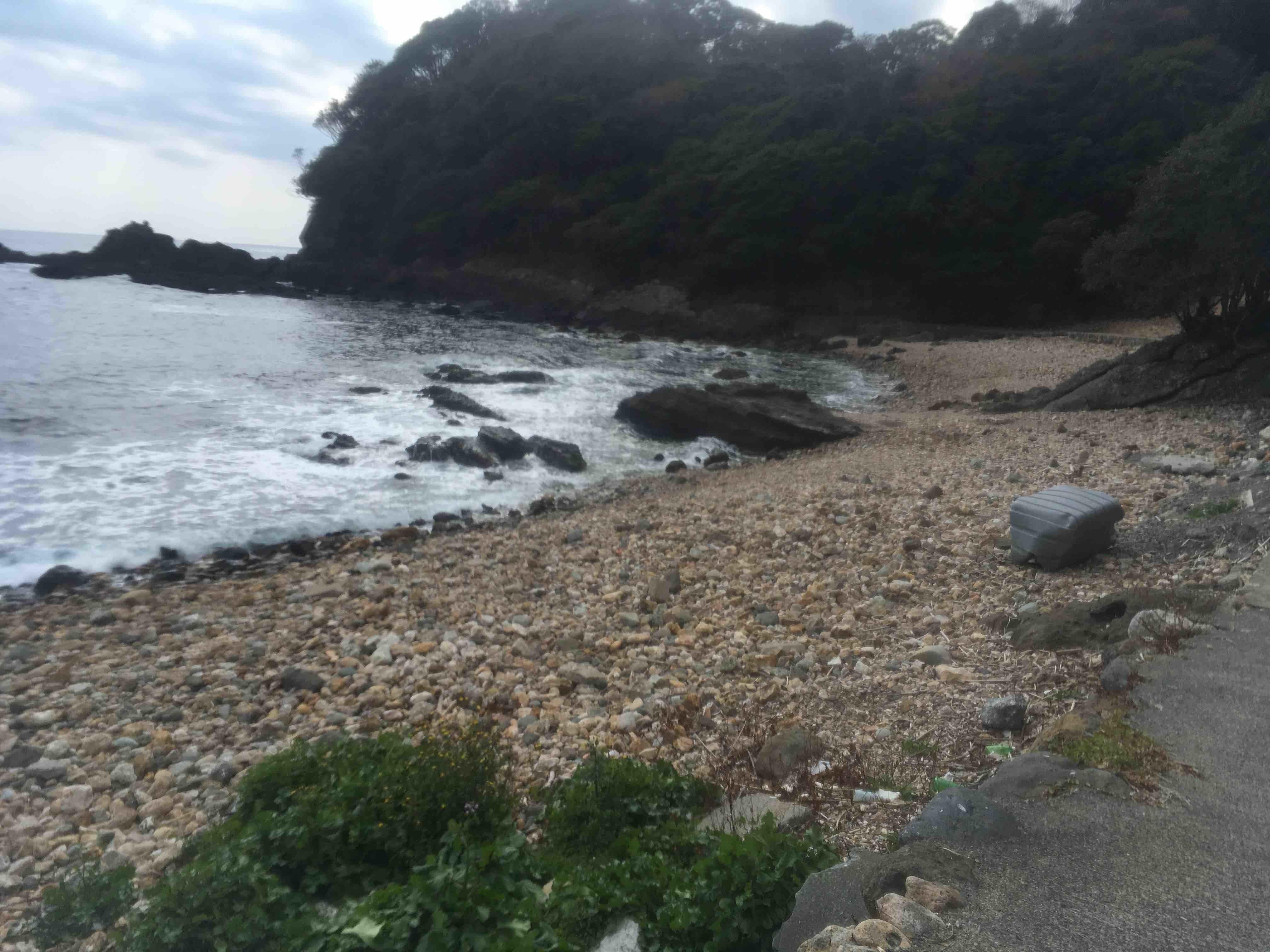 菖蒲沢海岸でビーチコーミングした_d0164691_20270119.jpg