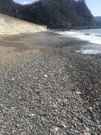 仁科海岸でビーチコーミングした_d0164691_20303052.jpg
