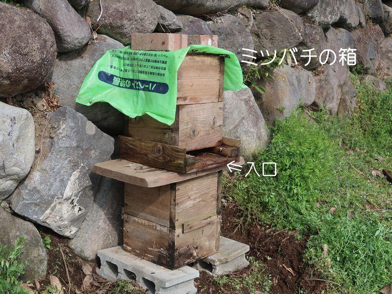 f0059498_20081611.jpg